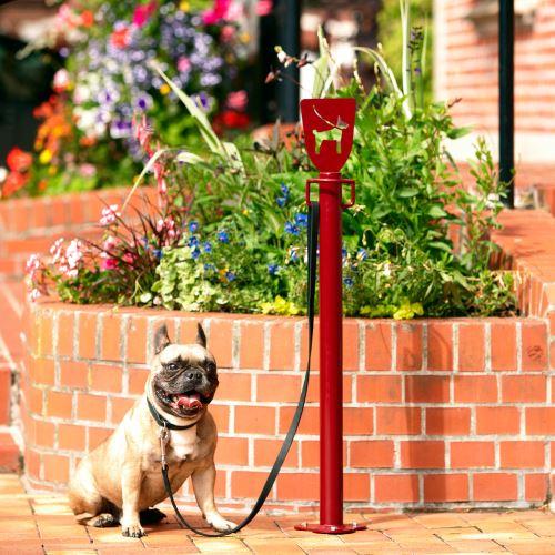 Stĺpik na priviazanie psíkov